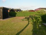 Tradgarden2008_3