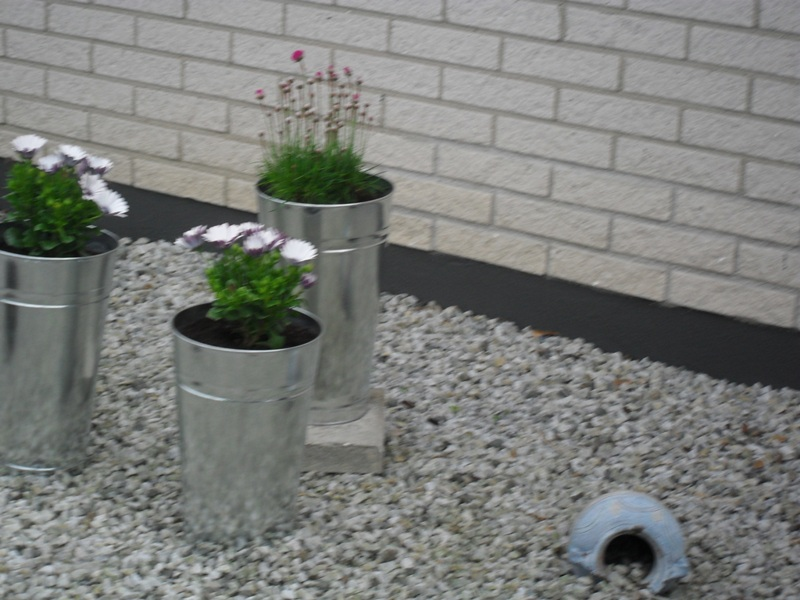 tradgarden_plantering2010-006